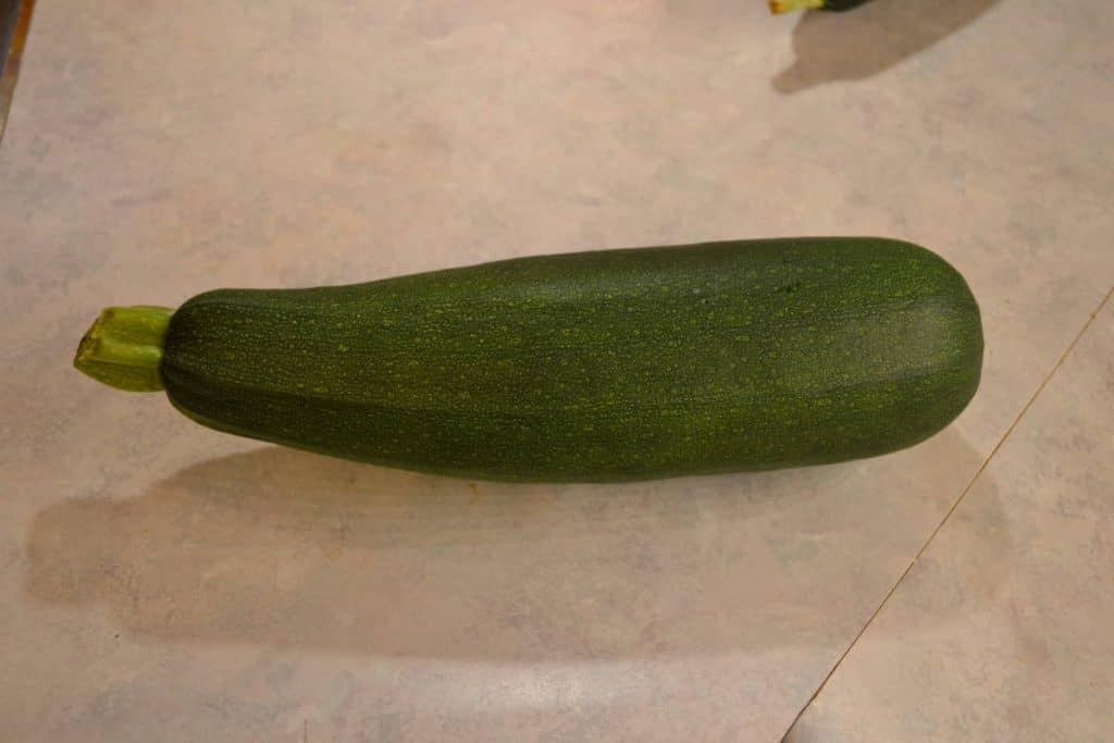 An organic black beauty zucchini grown by Farmer Jer is shown in this file photo.